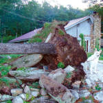 "HUGE TREE FALLS IN SOUTH WATERFORD — No one was injured, when this massive pine tree toppled over — rootball and all — onto the ledge next to an inground swimming pool located atop the ""saddle"" between Bear and Hawk Mountains Sunday, at Cindy DiCenso's home. (Ackley Photo)"