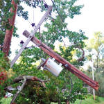SNAPPED — This utility pole, located north of the town office on Route 5 in Center Lovell, dangles among tree limbs. (Photo courtesy of Frederick S. Slater)